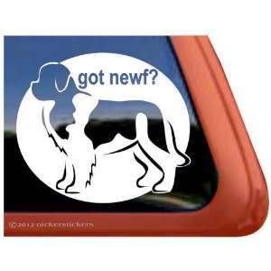 Got Newf? ~ Landseer Newfoundland Vinyl Window Auto Decal
