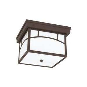 Sea Gull Ashville 2 Light Outdoor Fixture Cottage Bronze