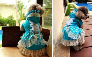 Royal Luxury Blue Lace Maid One Piece Dress Pet Dog Clothes Apparel