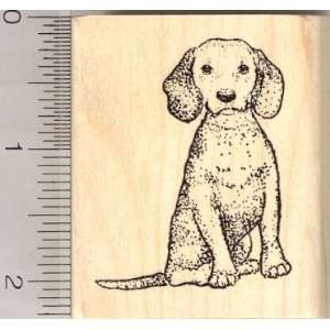 Beagle Dog Rubber Stamp Arts, Crafts & Sewing