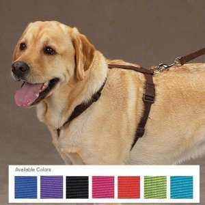 Zack and Zoey US2395 Nylon Dog Harness Baby