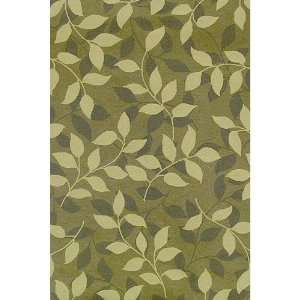 Green Indoor/Outdoor Rug   HRDVP   5 x 8 Rectanggle